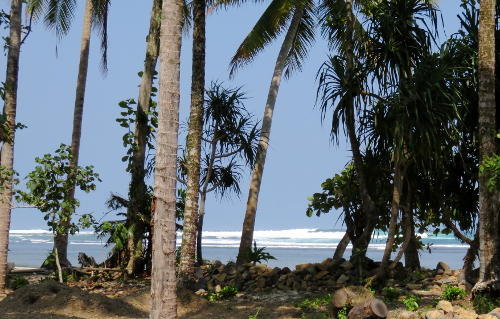 View of Ujung Bocur through palms