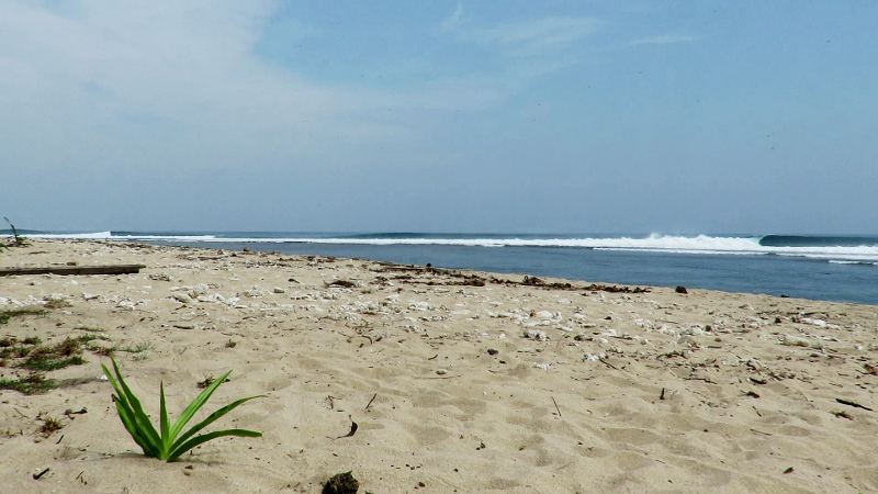 Beach Way Jambu Sumatra
